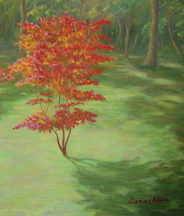 pastel painting of a red maple tree in early summer